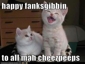 happy fanksgibbin  to all mah cheezpeeps