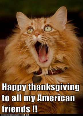 Happy thanksgiving to all my American friends !!