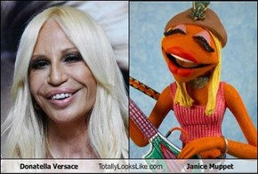 Donatella Versace Totally Looks Like Janice Muppet
