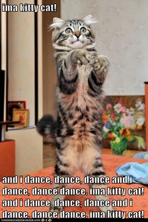 ima kitty cat!  and i dance, dance, dance and i dance, dance dance. ima kitty cat! and i dance, dance, dance and i dance, dance dance. ima kitty cat!