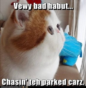 Vewy bad habut...  Chasin' teh parked carz.