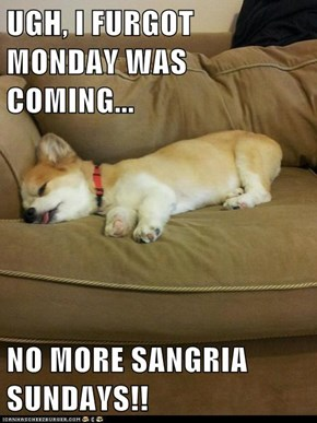 UGH, I FURGOT MONDAY WAS COMING...  NO MORE SANGRIA SUNDAYS!!
