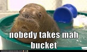 nobedy takes mah bucket