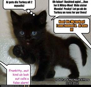 Oh fubar!  Bushted agin!.....Run for it Mitey-Moe!  Hide sister Manda!  Pesky!  Let go ob de Turkey an runs fer yur lives!