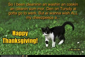 So I been cleaninin an washin an cookin an cleanin sum mor. Den on Tursdy ai gotta go to werk. But ai wanna wish ALL my cheezpeeps a...