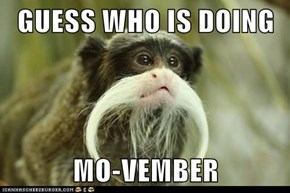 GUESS WHO IS DOING   MO-VEMBER