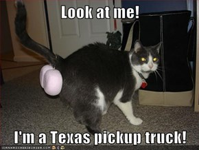 Look at me!  I'm a Texas pickup truck!