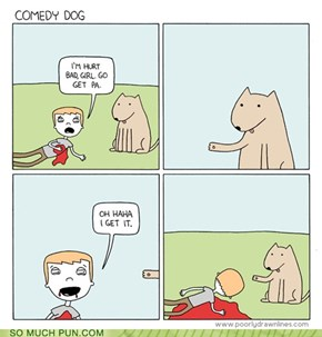 Comedy Dog