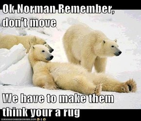 Ok Norman Remember, don't move