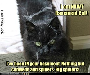 Now big spiders, on the other hand, ARE ebil.