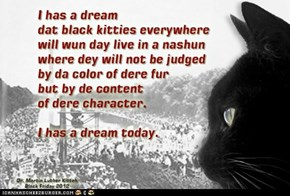 I Has A Dream