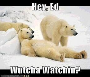 Hey, Ed  Wutcha Watchin?