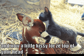 and now a little kissy for ze top of your head