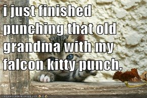 i just finished punching that old grandma with my falcon kitty punch.