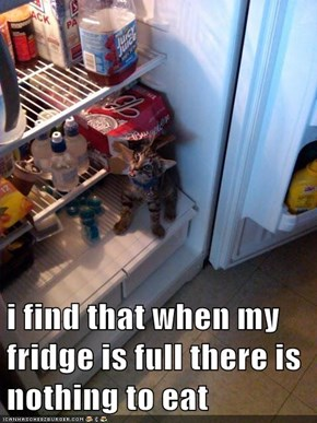 i find that when my fridge is full there is nothing to eat