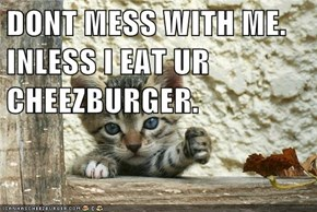 DONT MESS WITH ME. INLESS I EAT UR CHEEZBURGER.