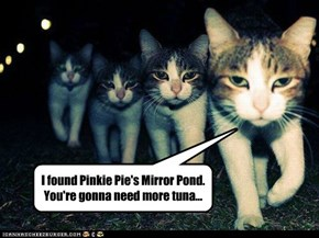 I found Pinkie Pie's Mirror Pond. You're gonna need more tuna...