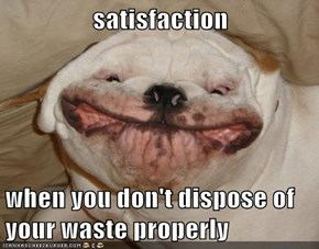 satisfaction  when you don't dispose of your waste properly