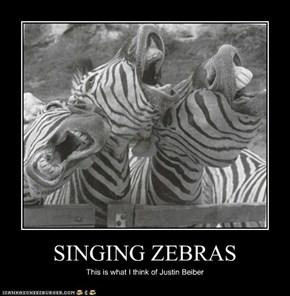 SINGING ZEBRAS