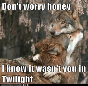 Don't worry honey  I know it wasn't you in Twilight