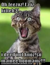Oh Jeezuz! I'z iz kitteh?!  i deed not knoz!so mainee hoomainz!!!