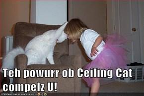 Teh powurr ob Ceiling Cat compelz U!