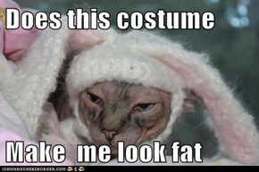 Does this costume   Make  me look fat