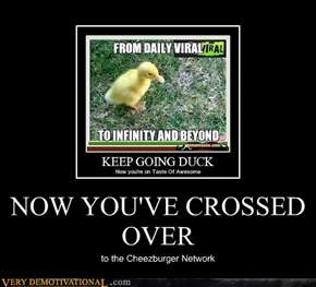 NOW YOU'VE CROSSED OVER