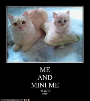ME AND MINI ME