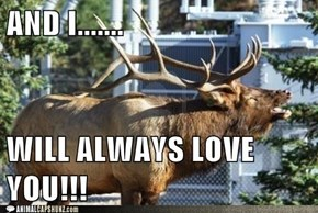 Karaoke Moose