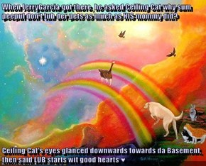 When JerryGarcia got there, he asked Ceiling Cat why sum peepul don't lub der pets as much as HIS mommy did?  Ceiling Cat's eyes glanced downwards towards da Basement, then said LUB starts wit good hearts ♥
