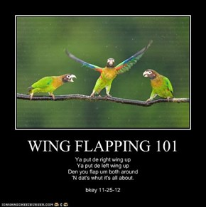 WING FLAPPING 101