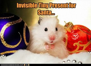 Invisible Tiny Present for Santa...