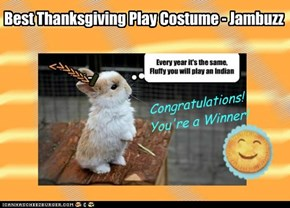 Best Thanksgiving Play Costume - Jambuzz