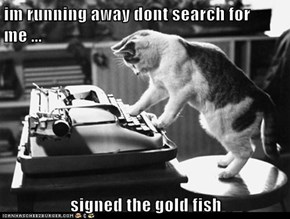 im running away dont search for me ...  signed the gold fish