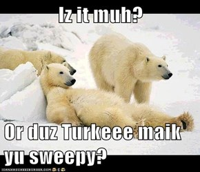 Iz it muh?  Or duz Turkeee maik yu sweepy?