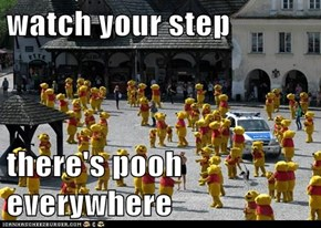 watch your step  there's pooh everywhere