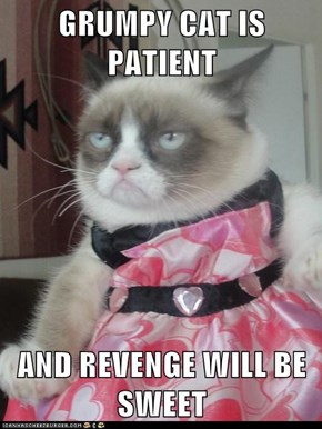 GRUMPY CAT IS PATIENT  AND REVENGE WILL BE SWEET
