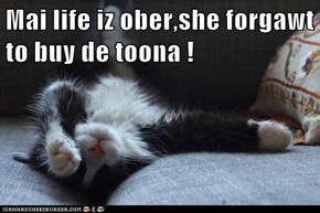 Mai life iz ober,she forgawt to buy de toona !