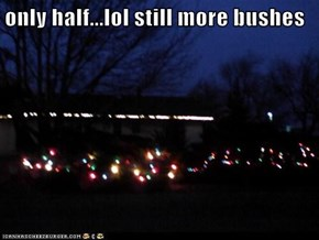 only half...lol still more bushes