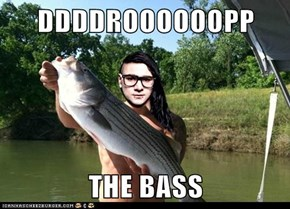 DDDDROOOOOOPP  THE BASS