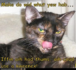Make do wid whut yew hab...  Iffin aih had thums, aih coud use a kweenex!