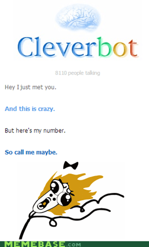 Cleverbot: Call me maybe!