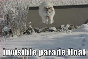invisible parade float