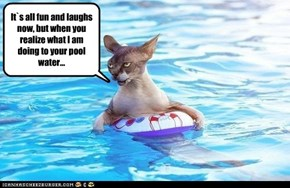 It`s all fun and laughs now, but when you realize what I am doing to your pool water...