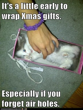 It's a little early to wrap Xmas gifts.  Especially if you forget air holes.