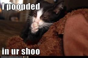 I poopded  in ur shoo