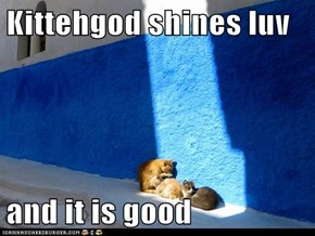 Kittehgod shines luv  and it is good
