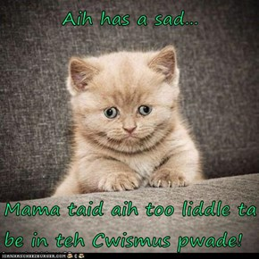 Aih has a sad...  Mama taid aih too liddle ta be in teh Cwismus pwade!