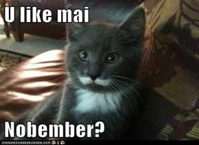 U like mai  Nobember?